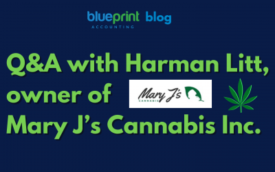 Q&A with Harman Litt, owner of Mary J's Cannabis Inc.
